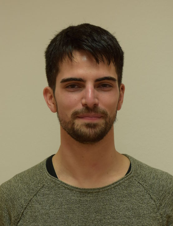 Thomas Steffek profile